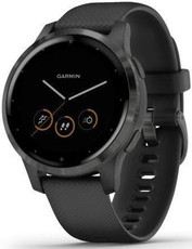 Garmin Vívoactive 4S Gray/Black Band